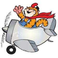 кот на самолете