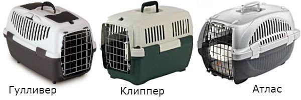 контейнеры для кошек