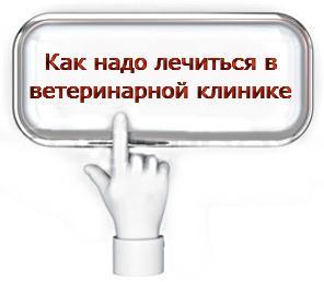 кнопка с рукой