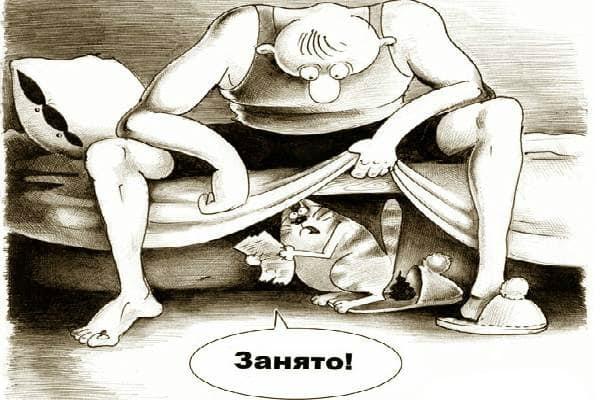 кот ходит в тапки