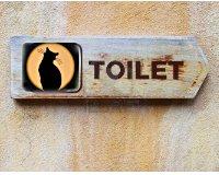 Туалет типа сортир