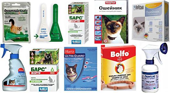 противоклещевые препараты для кошек