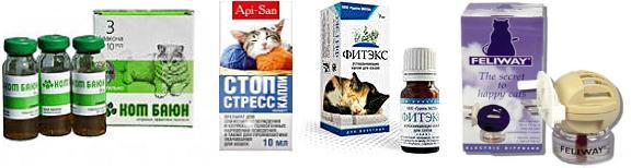 корректоры поведения для кошек