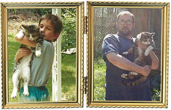 растем с кошкой -3