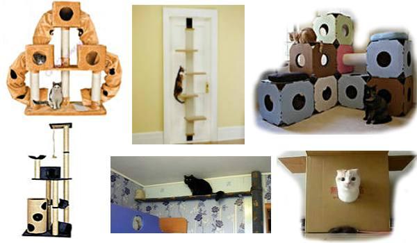 комплекс для кошки