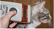 сканер для чипа кошки