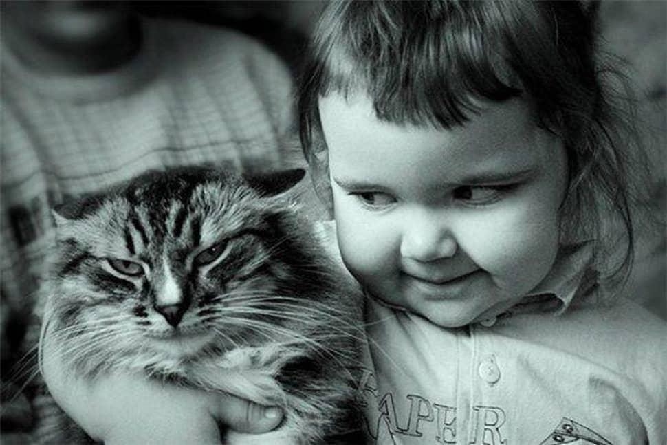 10 Смешных Кошек с Маленькими Детьми