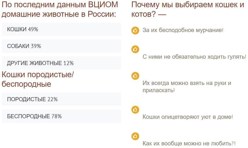 CatiCat.ru - cайт о кошках 😻, котах 😼 и котятах 🐈!